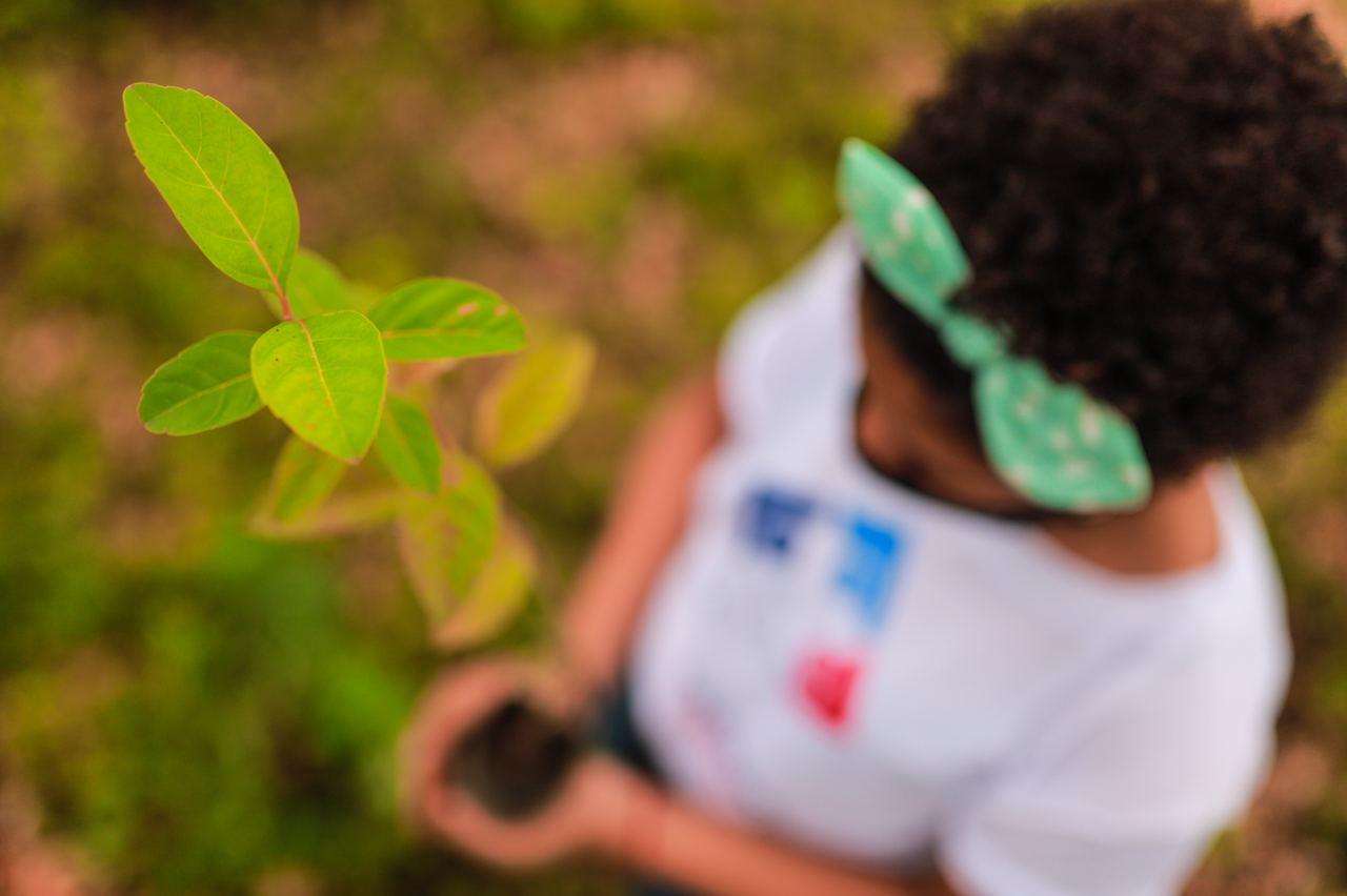 Prosoli en jornada de reforestación